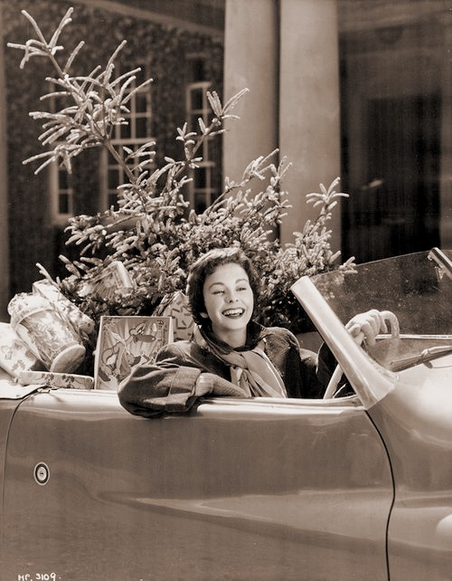British actress Jean Simmons smiles as she drives home her Christmas tree