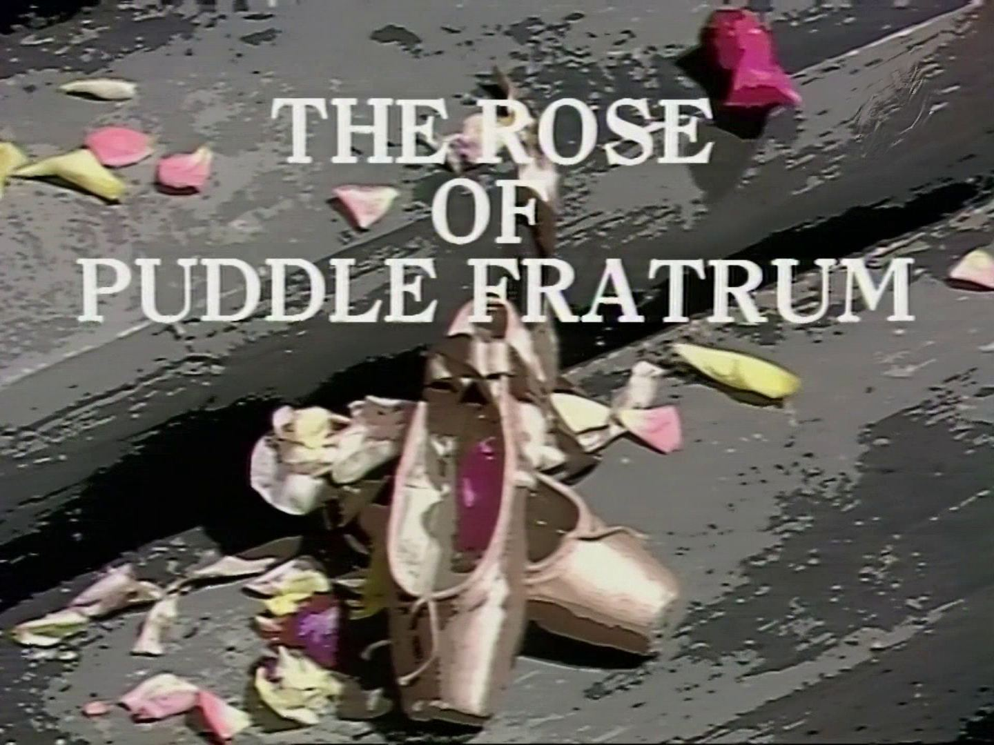 Main title from the 1978 'The Rose of Puddle Fratrum' episode of Shadows (1975-78) (1)