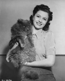Margaret Lockwood, in costume for A Girl Must Live, holds up a cat for the camera.  The moggy is decidedly unimpressed.