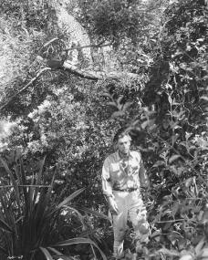 Stewart Granger (as Rian X. Mitchell) in a photograph from Green Fire (1954) (11)
