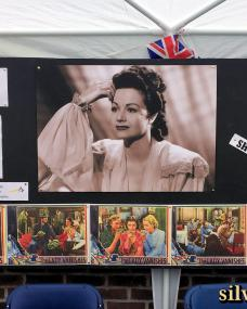 Margaret Lockwood plaque refreshment tent featuring posters for The Lady Vanishes and its screening.  Cake stall taking donations for The Shooting Star Children's Hospice