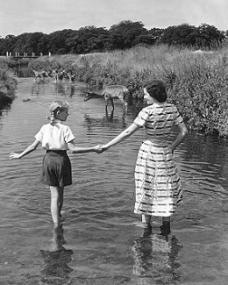 Margaret Lockwood and Julia Lockwood share a walk in a stream with the deer of Richmond Park