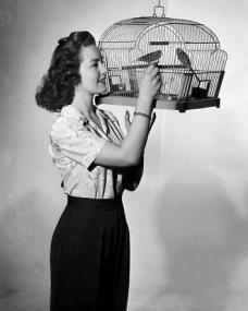 Patricia Roc in trousers plays with a birdcage