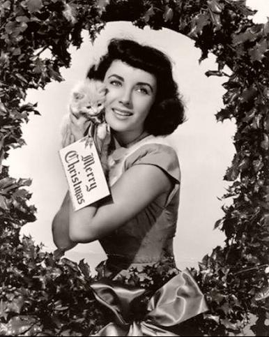 Elizabeth Taylor, British actress, surrounded by a holly wreath holds aloft an adorable kitten  The tag on the feline reads 'Merry Christmas'