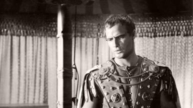 Mark Antony (Marlon Brando) in Julius Caesar (1953)