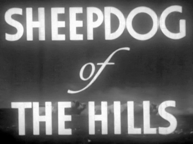 Main title from Sheepdog of the Hills (1941) (3)