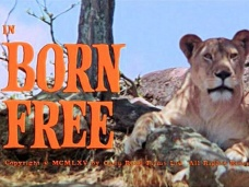 Main title from Born Free (1966)