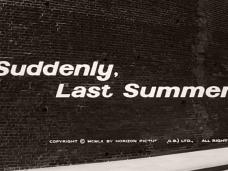Suddenly, Last Summer (1959) opening credits (4)