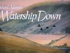 Watership Down (1978) opening credits
