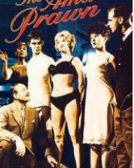 Video cover from The Amorous Prawn (1962) (1)