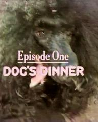 Main title from the 1981 'Episode One – Dog's Dinner' episode of Bognor (1981-1982) Let Sleeping Dogs Die (2)