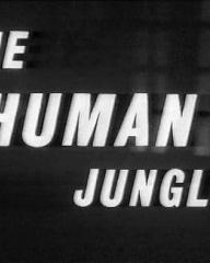 Main title from The Human Jungle (1963)