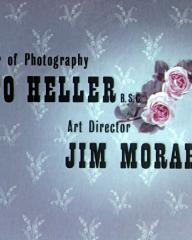 Main title from The Ladykillers (1955) (8)