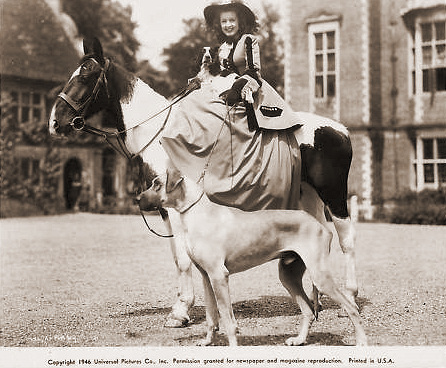 Patricia Roc in costume for The Wicked Lady smiles for the camera as she sits astride a horse.    The boxer mimics the horse's pose.